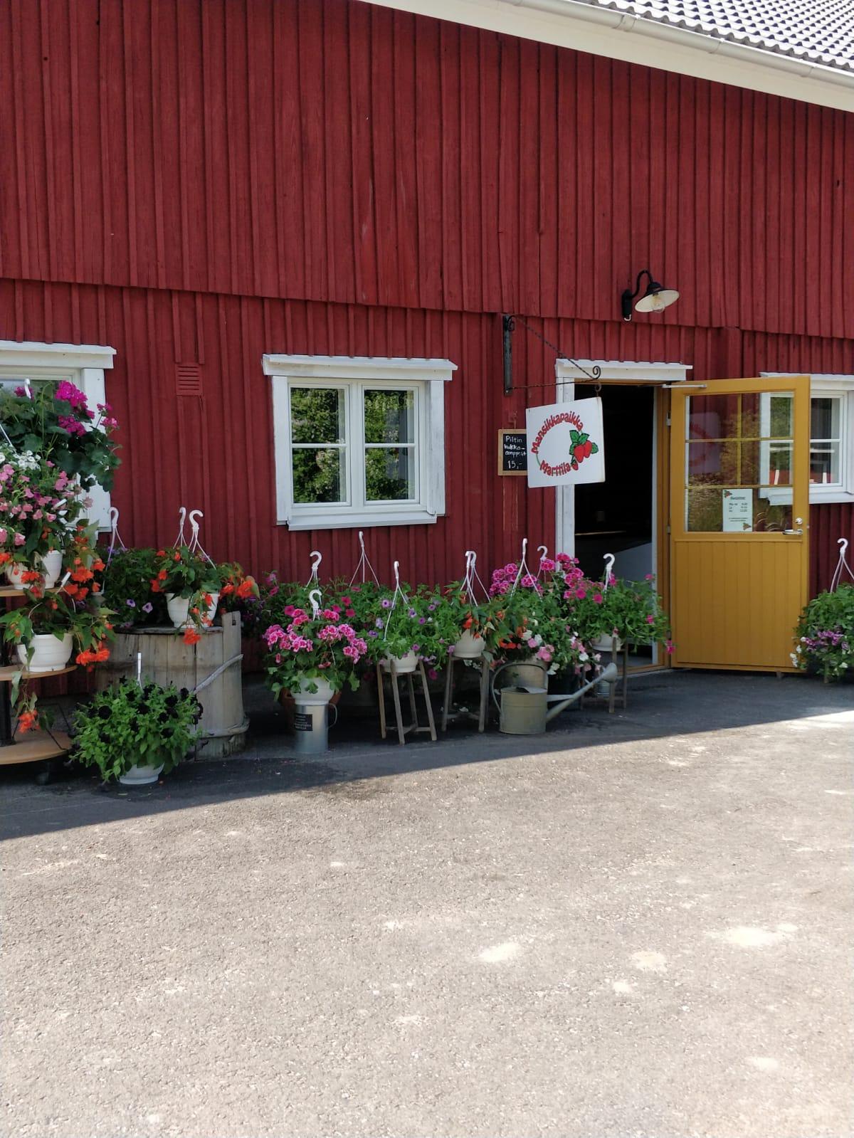 Mansikkapaikka Marttila (strawberry place)